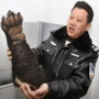 Ten bear paws seized in China